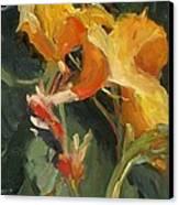 Canna Canvas Print by Elizabeth Taft