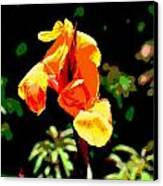 Canna In Summer Canvas Print