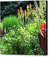 Canna Lily Garden Canvas Print by Gretchen Wrede