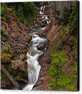 Canyon Stream Canvas Print by Mike Reid