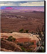 Canyonland Overlook Canvas Print by Robert Bales