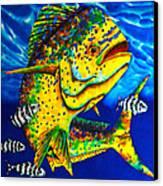 Caribbean Bull Canvas Print