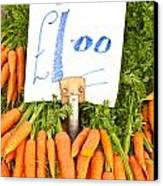 Carrots Canvas Print by Tom Gowanlock