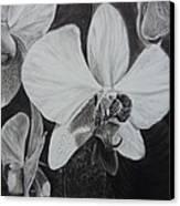 Cascade Of Orchidds Canvas Print by Estephy Sabin Figueroa