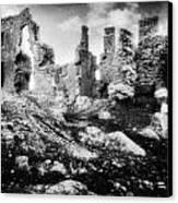Castle Lyons Canvas Print