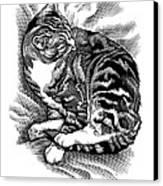 Cat Grooming Its Fur, Artwork Canvas Print by Bill Sanderson