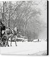 Central Park In Falling Snow Canvas Print by Axiom Photographic