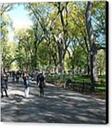 Central Park Mall Canvas Print by Rob Hans