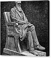 Charles Darwin (1809-1882) Canvas Print by Granger