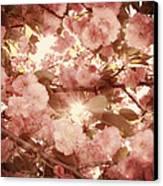 Cherry Blossom Sky Canvas Print by Amy Tyler