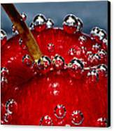Cherry Bubbles Under Water Canvas Print