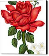 Christmas Rose 2011 Canvas Print