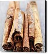 Cinnamon Sticks Canvas Print by Elena Elisseeva