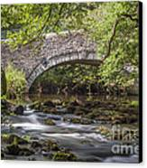Clearbrook River Meavy Canvas Print by Donald Davis