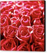 Close-up Of A Mass Of Red Roses Canvas Print by Stockbyte