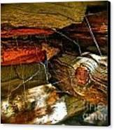 Cobwebs Canvas Print by Tina Slee