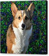 Collie Canvas Print by Bill Cannon