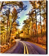 Colorful Bend Canvas Print by Douglas Barnard