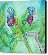Colorful Lorikeet Couple Canvas Print by M C Sturman