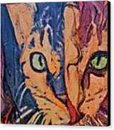 Colors Of A Cat Canvas Print by Ruth Edward Anderson