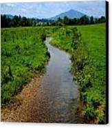 Cool Mountain Stream Canvas Print by Frozen in Time Fine Art Photography