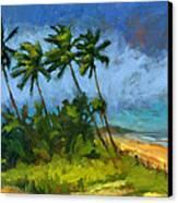 Coqueiros De Massarandupio Canvas Print