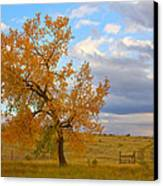 Country Autumn Landscape Canvas Print by James BO  Insogna