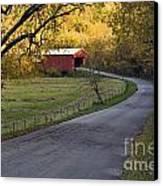 Country Lane - D007732 Canvas Print
