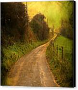 Countryside Road Canvas Print by Svetlana Sewell