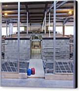 Cowshed Interior Canvas Print by Jaak Nilson