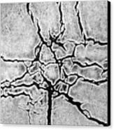 Cracks Canvas Print