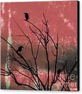 Crows The Watcher Canvas Print by Sacred  Muse