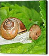 Cute Baby Boy With A Snail Shell Canvas Print by Jaroslaw Grudzinski
