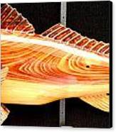 Cypress Red Fish Canvas Print by Douglas Snider