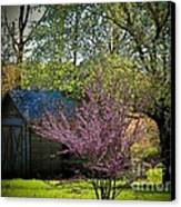 Daddys Old Shed In The Spring Canvas Print by Joyce Kimble Smith