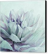 Dahlia Canvas Print by Priska Wettstein