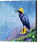 Damn Rain Canvas Print by Tracey Tilson