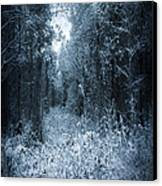 Dark Place Canvas Print by Svetlana Sewell