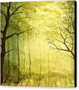 Deep Woods Canvas Print by Heather Matthews