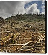 Deforested Area Canvas Print by Ned Frisk