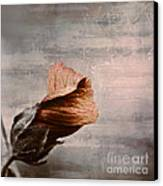 Deploiement - 05ft01b Canvas Print by Variance Collections