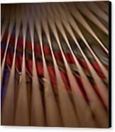 Detail Of Piano Strings Canvas Print