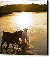 Dogs At Sunset Canvas Print by Stephanie McDowell