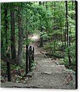 Down The Trail Canvas Print by CGHepburn Scenic Photos