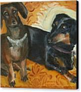Doxie Duo Canvas Print by Susan Hanlon