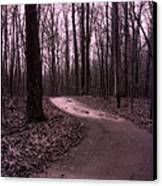 Dreamy Surreal Fantasy Woodlands Nature Path Canvas Print by Kathy Fornal