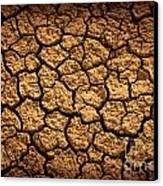 Dried Terrain Canvas Print by Carlos Caetano