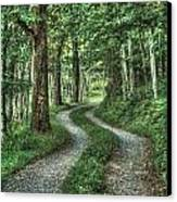 Driveway Out Canvas Print by Heavens View Photography