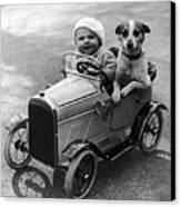 Driving Dog Canvas Print by Norman Smith