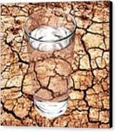 Drought Canvas Print by Victor De Schwanberg